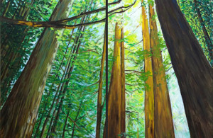 "forest_diptychForest Cathedral Diptych : 24""x60"" each"